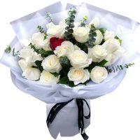 心中的向往-白玫瑰共27枝送朋友闺蜜女友老婆爱情友情白色情人节
