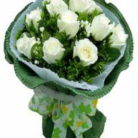 心的牵挂-9枝白玫瑰送朋友闺蜜同事老婆女友爱情友情白色情人节