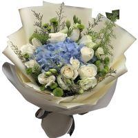 深情眷顾-11枝白玫瑰绣球花送朋友女友老婆同事闺蜜领导老师友情爱情白色情人节