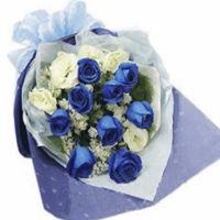 流星的祝愿-9枝蓝玫瑰送女友老婆闺蜜爱情友情情人节七夕节女神节520表白