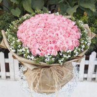 99枝粉玫瑰戴安娜玫瑰送女友送老婆情人节七夕节女神节爱情表白