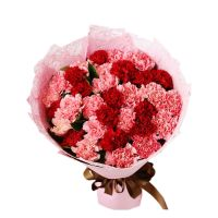 你的笑靥 粉色红色康乃馨花束送朋友老师长辈母亲病人母亲节中秋节感恩节重阳节教师节女神节