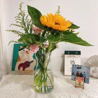 家养鲜花--向日葵粉康乃馨 到店取