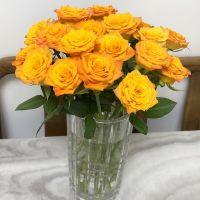 家养鲜花--金辉玫瑰 到店取