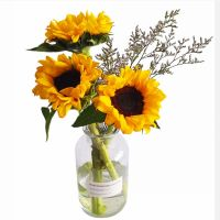家养鲜花--向日葵 到店取
