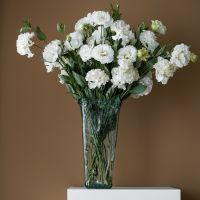 家养鲜花--白色洋桔梗 到店取