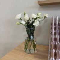 家养鲜花--白色洋桔梗小束 到店取
