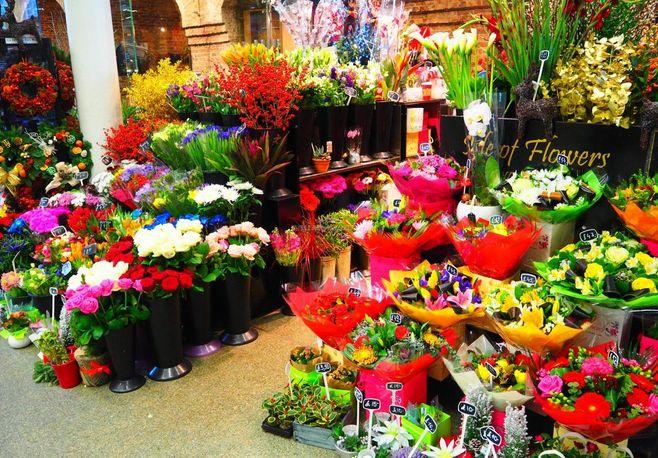 安徽枞阳鲜花